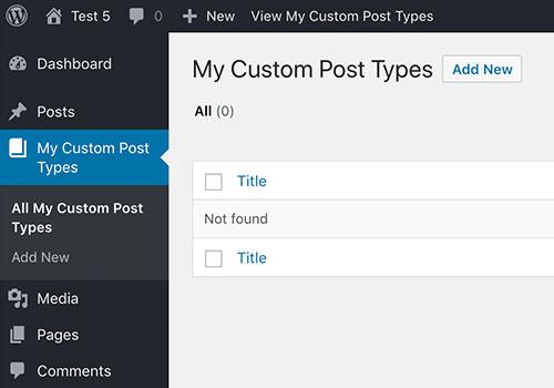 Custom Post Type demo screenshot